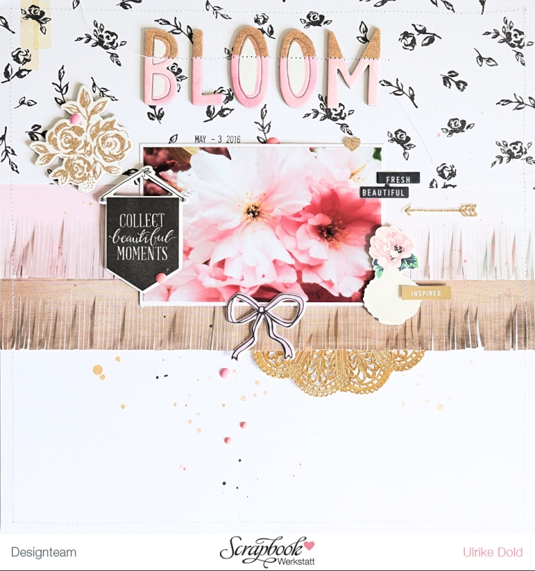 Bloom DT